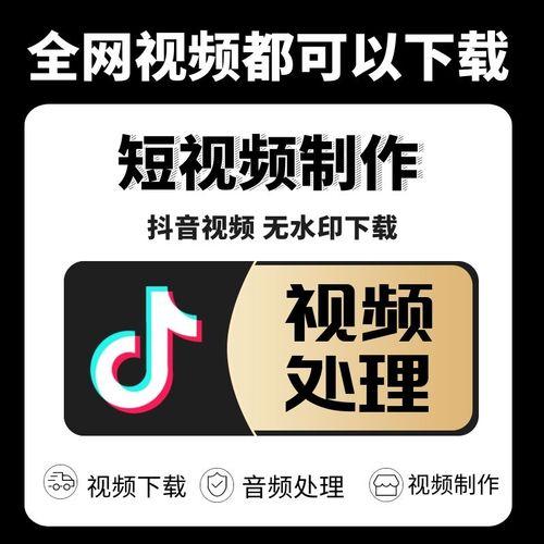 抖音视频无水印下载拼接格式转换mp4提取音频音乐下载各大网站视