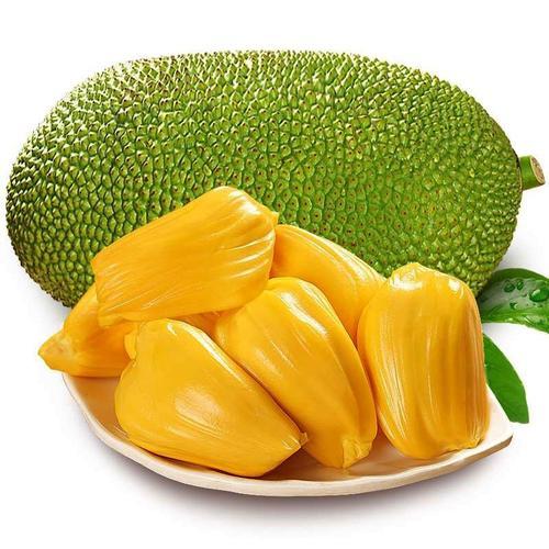 海南菠萝蜜一个 15-20斤热带水果万宁保亭基地特产果肉厚干苞黄肉