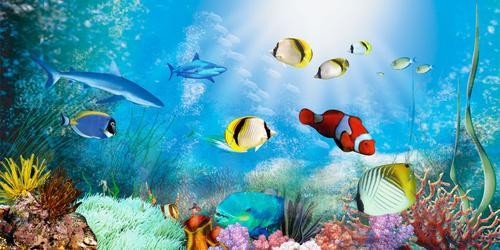 707居家海报展板喷绘素材贴纸图片485海底世界海报(5)