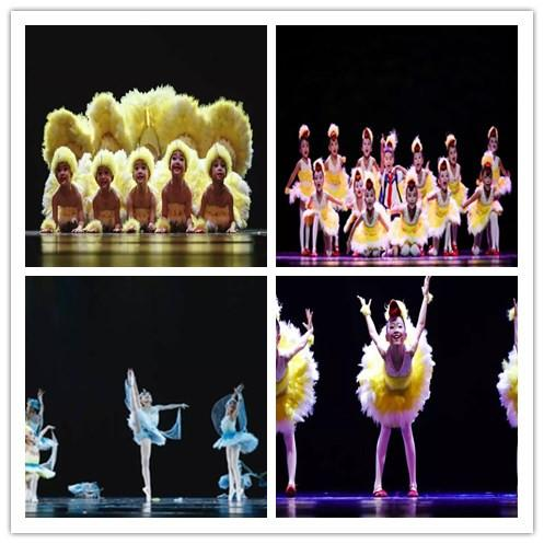 小鸭子的梦舞蹈演出服第九届小荷风采儿童动物表演服饰幼儿天鹅舞