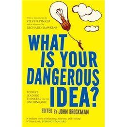 what is your dangerous idea?  你的危险念头是什么?