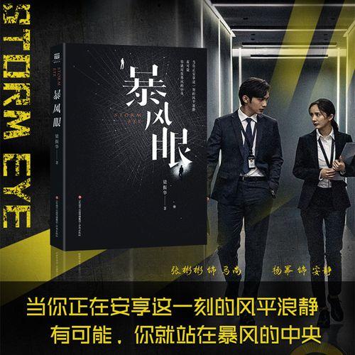 暴风眼 聚焦国安题材当代谍战长篇小说 梁振华继密战.
