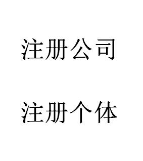 广州深圳佛山东莞上海杭州香港武汉成都公司注册