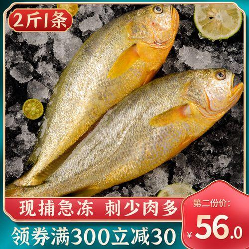 大黄花鱼 新鲜 冷冻海鲜水产2斤1条包邮青岛东海黄花鱼 黄鱼