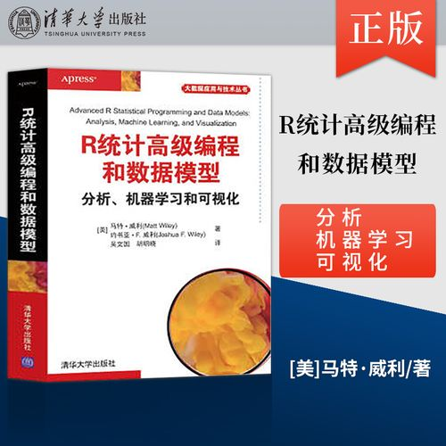 【出版社直供】r统计高级编程和数据模型  分析 机器学习和可视化 r