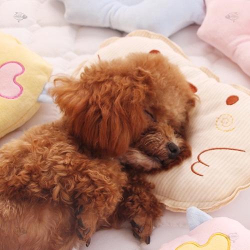 狗狗用品狗狗专用睡觉小枕头泰迪幼犬柯基法斗小型犬