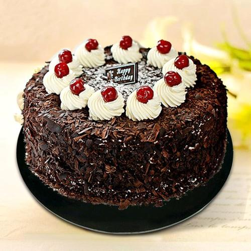 巧克力黑森林仿真塑胶蛋糕 蛋糕开业庆典巧克力奶油生日假塑胶