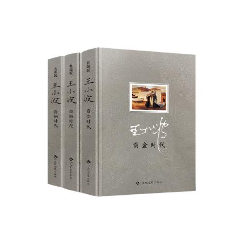 王小波三部曲 黄金时代+白银时代+青铜时代(3册)王小波全集 现当代