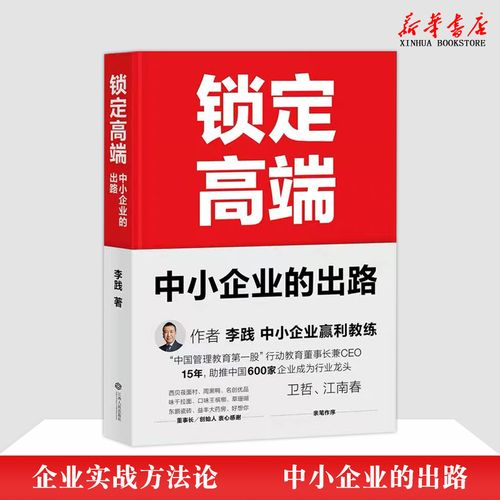 锁定高端中小企业的出路精行动教育李践管理方面的书籍管理学经营管理
