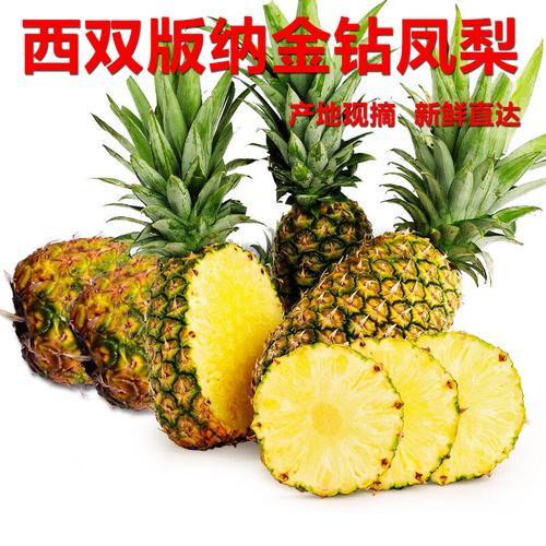 云南西双版纳金钻凤梨牛奶手撕无眼菠萝新鲜当季现摘热带水果海南