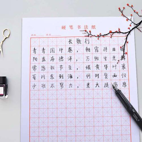 田字格米字格钢笔练字本方格纸书法作品成人儿童小学生硬笔