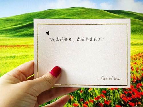 卡片表白卡明信片节日生日贺卡送男女朋友表白卡爱情经典语录创意