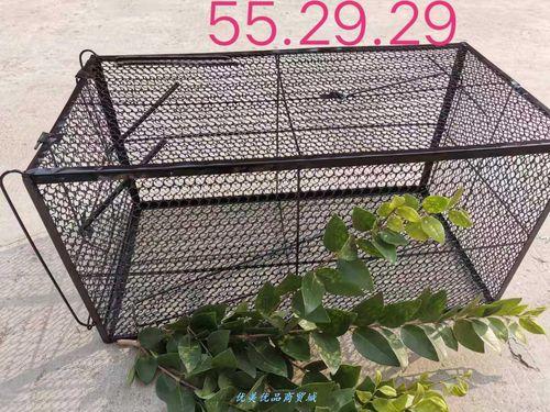 捕鼠笼大号捕鼠笼家用捕猫笼抓猫器大号捕抓器