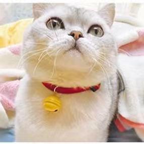原创宠物卡通铃铛可爱狗狗猫猫咪兔铃铛泰迪饰品多啦a梦项圈包邮