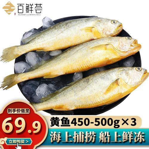 百鲜荟 国产特产大黄花鱼500g/条左右 海鲜水产 黄花鱼3条