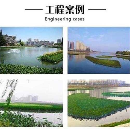 社化人工湖种花水面大q规格泡沫板.人工造岛水面种菜绿区浮景稳