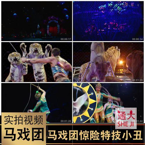 杂技马戏团节目表演时尚惊险特技秀精彩欢乐小丑高清