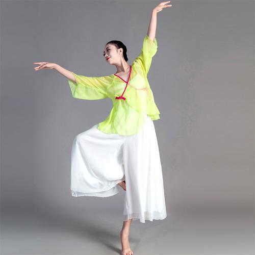 古典演出服装女成人宽松舞蹈服飘逸中国古风身韵纱衣民族舞表演服