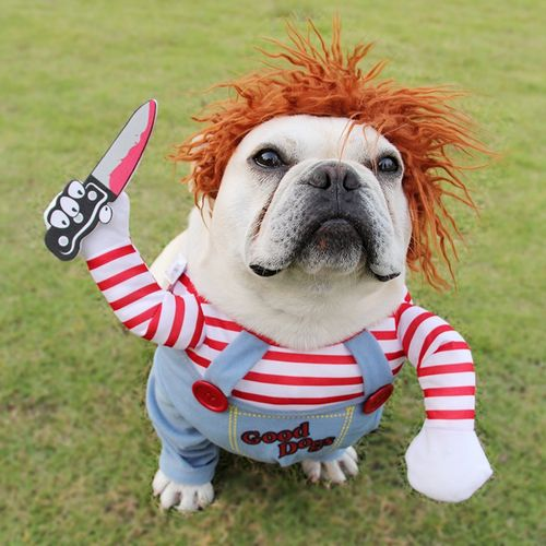 新款爆款致命娃娃变身装狗衣服中型犬万圣节宠物搞笑