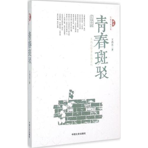 青春斑驳 王鸿达 著 中国现当代文学 文学 中国文史出版社 全新正图