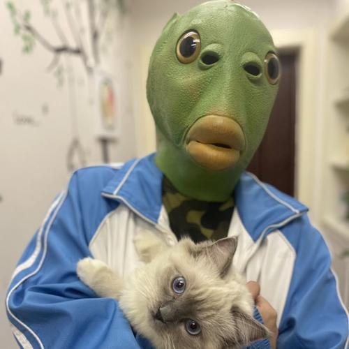 大绿鱼头套搞怪外星人头套面具绿鱼人绿鱼人头套抖音